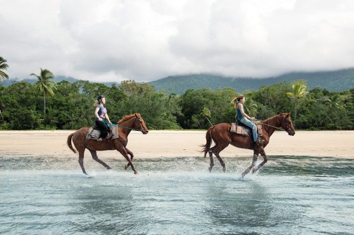 Ride horses along the white sandy beaches at Cape Tribulation http://blog.queensland.com/2014/11/20/100-things-to-do-cairns-great-barrier-reef/ #thisisqueensland