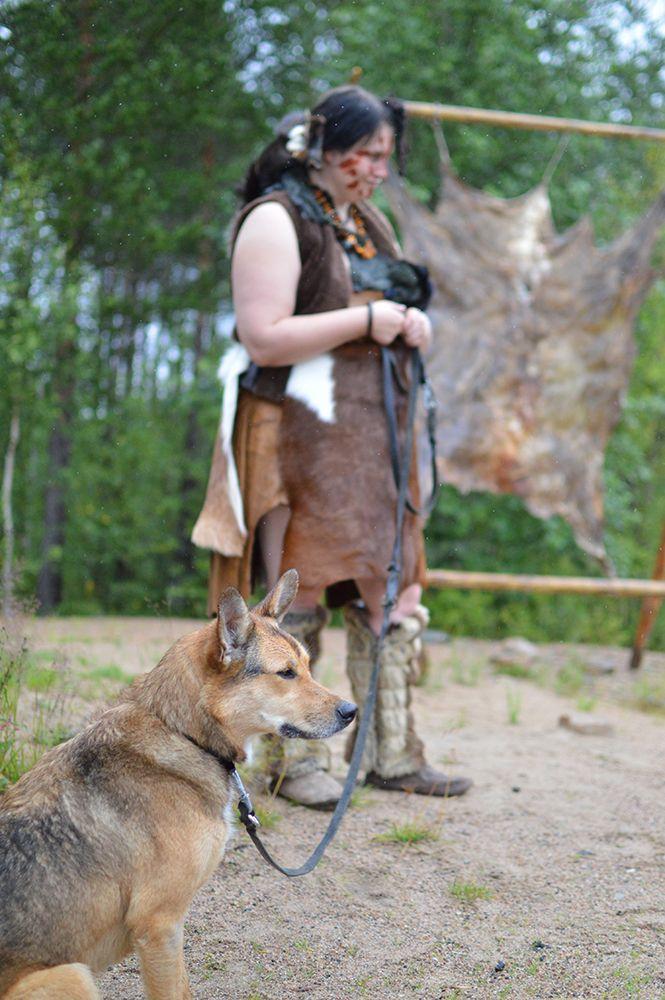 Muinaismarkkinoiden menossa mukana on myös muinaiskoira, joka ottaa vieraat vastaan häntää heiluttaen. Luuppi, Oulu (Finland)