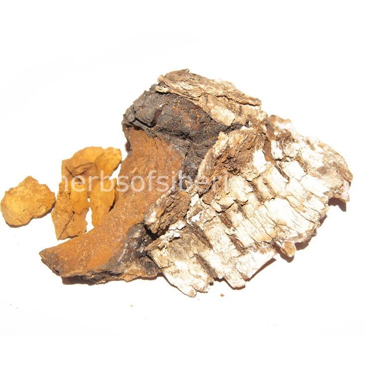 Wild raw Chaga mushroom pieces/chunks. (50 gr) Not cultivated. 100% natural.