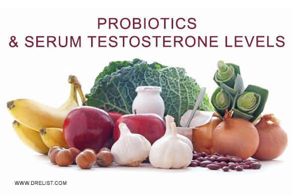 #Probiotics & Serum #Testosterone Levels  #Organic and #fermented #food are the best sources of #natural #probiotics and #bacteria which keeps both #body and #mind #healthy.
