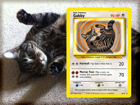 your Pet as a Pokemon card by StepbyStepStudio on Etsy