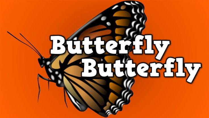 Butterfly, Butterfly! Free youtube video (a song for kids about the butterfly life cycle)