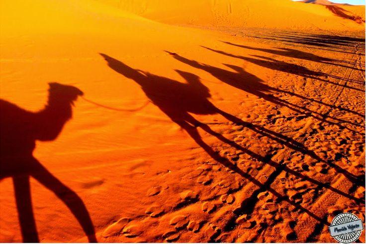 Marrocos: uma noite no Deserto do Saara - http://www.felipeopequenoviajante.com/2014/10/marrocos-uma-noite-no-deserto-do-saara.html