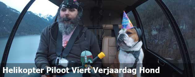 Helikopter Piloot Neemt Zijn Hond Mee Voor Zijn Verjaardag.