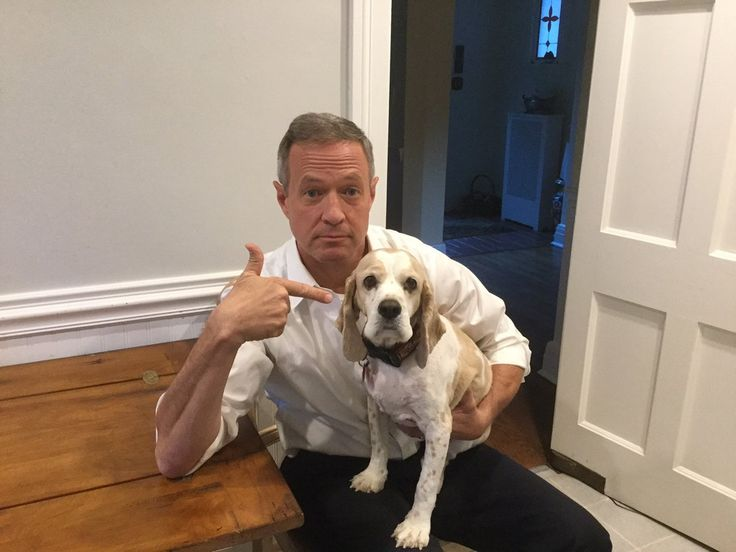2016 Democratic Presidential Candidate, Martin O'malley, Pointing At His Dog, Rex