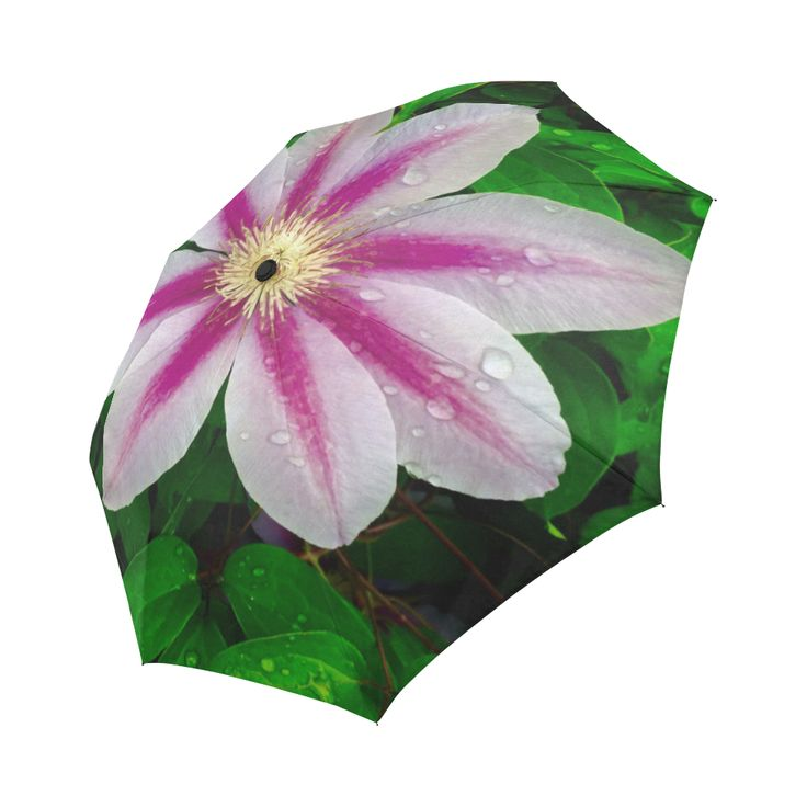 Beautiful Floral Wet Look Umbrella Auto-Foldable Umbrella