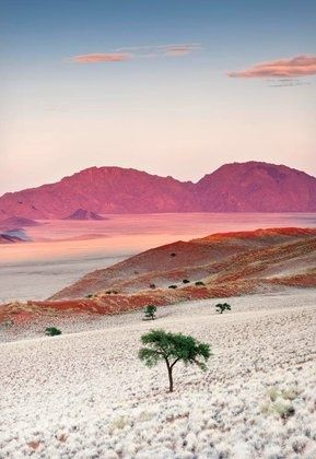 Nambia, Africa.
