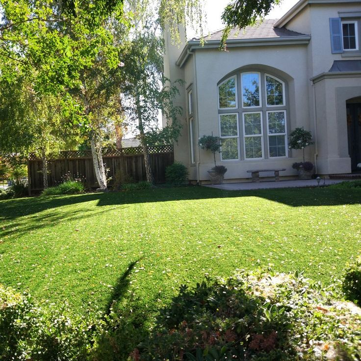 Marvelous Golden Moon Artificial Grass Rug Series PE Indoor/Outdoor Green Decorative  Synthetic Artificial Grass Turf