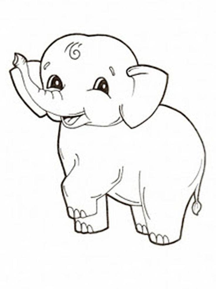 small elephant next leg lift