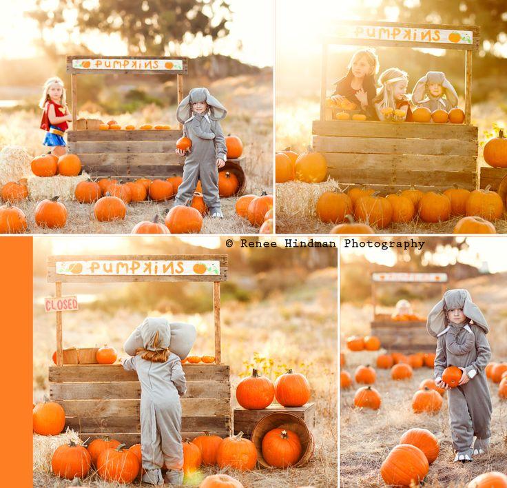 Fall mini session Pumpkin stand  children's photography