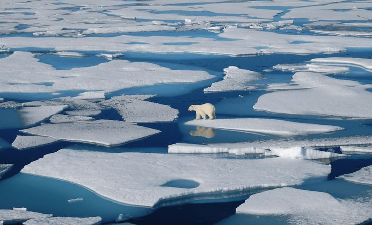 Recent Loss of Ice in Arctic is One of the Largest in History
