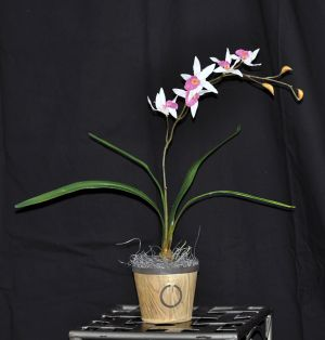 """The Artificial Silk Safari Orchid is sporting 5 flowers that are 2 Tone Pink and white; 3 buds and 4 leaves. The base of the plant is showing the roots of an actual live growing orchid.  29.5"""" overall length."""
