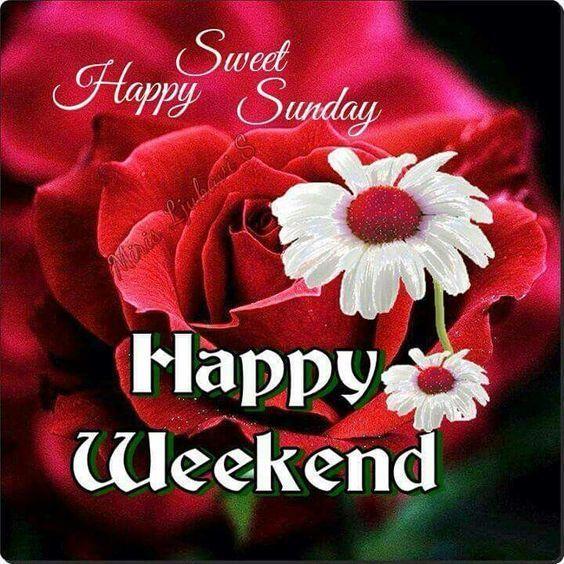 255060-Sweet-Happy-Sunday-Happy-Weekend.jpg (564×564)