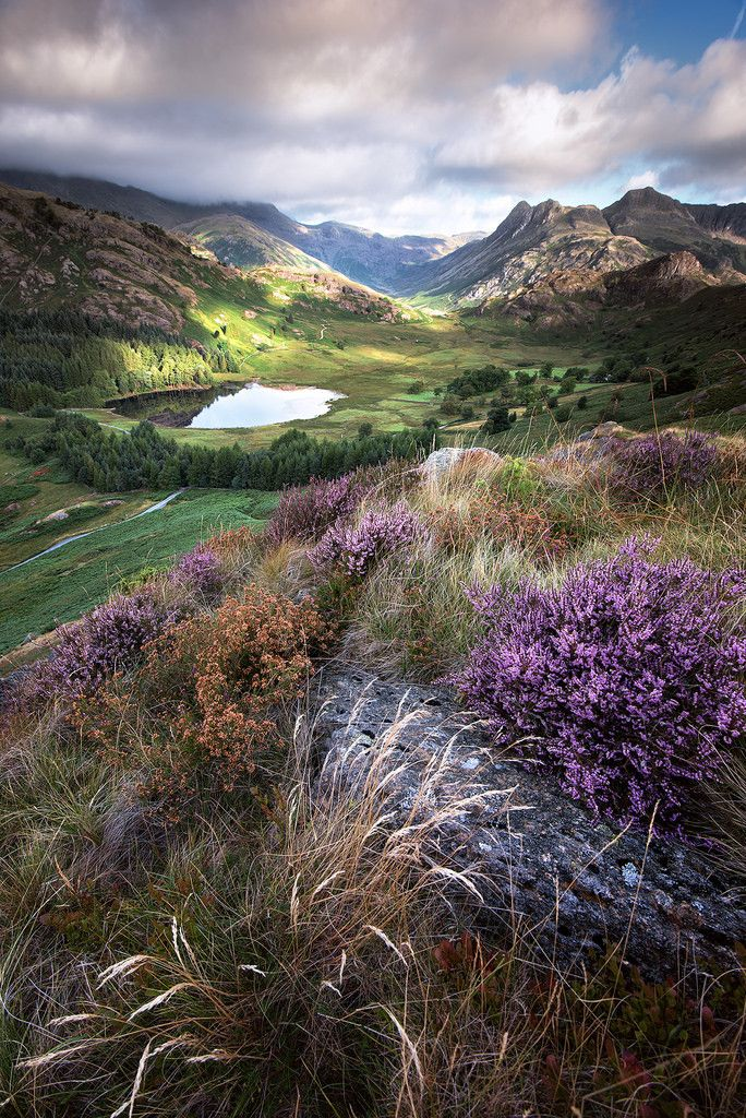 Wanderthewood Langdale Pikes Lake District England By John Ormerod Cool Pictures Of Nature Nature Pictures Beautiful Nature