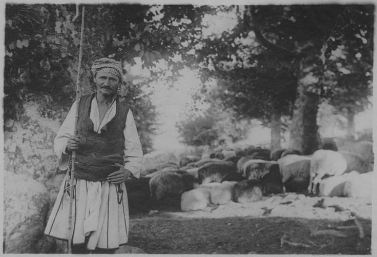 Grèce ; Macédoine centrale ; Thessalonique ; Salonique (environs) Populations civiles dans la région de Salonique (juillet-août 1918). Un berger