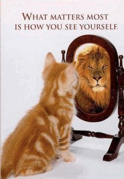 22 Motivating Self Esteem quotes on Building Confidence