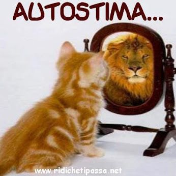 "Autostima..[Italian for ""confidence"" or ""self-worth"".]"