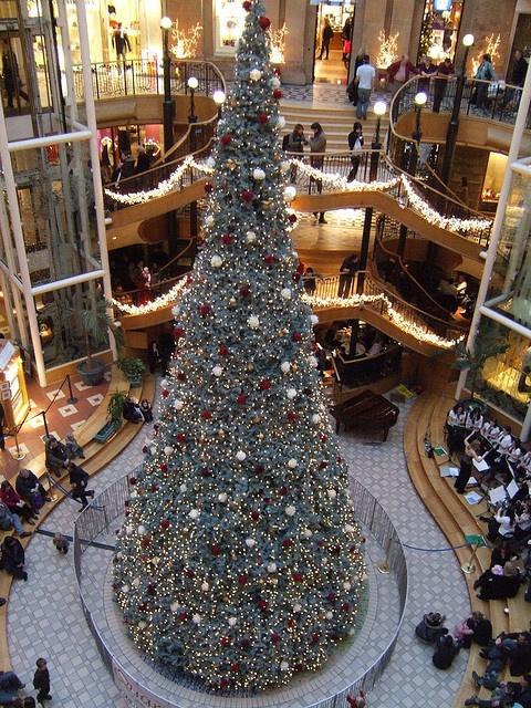 Princes Square, Glasgow, Christmas Tree by Rob Lightbody, via Flickr
