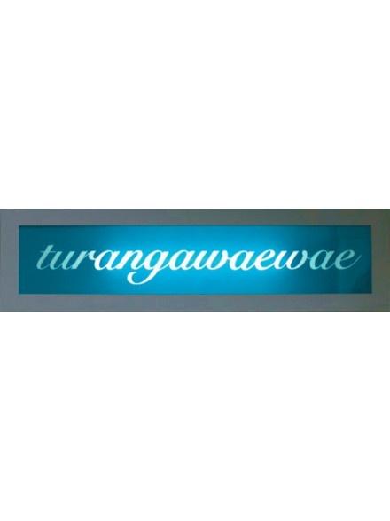 Piiata Lights - Te Reo Lightboxes - Turangawaewae  I sooo want one of these!!