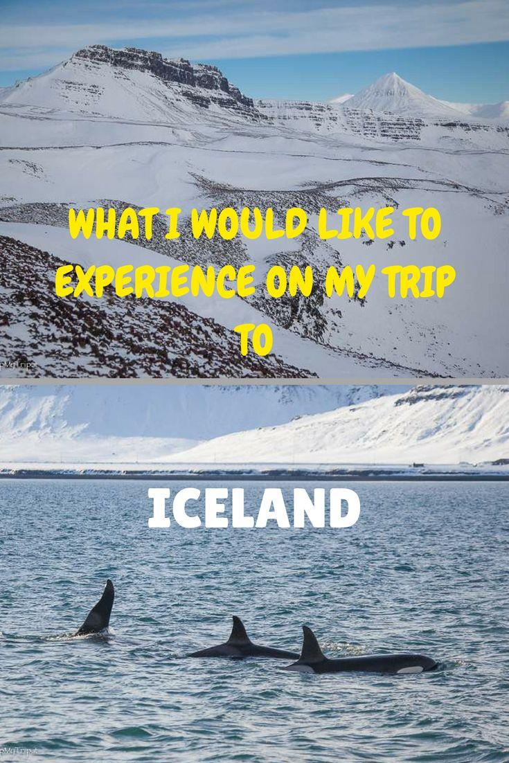 I have been wanting to visit Iceland for a long time – actually, well before it became a hot travel destination. The hiking, the wild landscape, the wildlife – everything it has to offer resonates with me