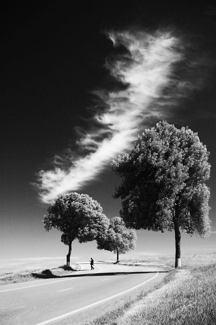 Photographie Noir Et Blanc 100 Idees Inspirantes Pour Votre Interieur Photographie Noir Et Blanc Photographie De Paysage Photographie