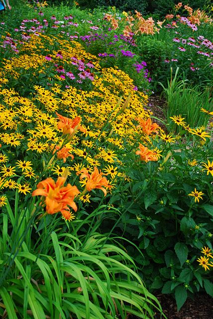 """Lillies & daisies...a """"must have"""" in the garden"""