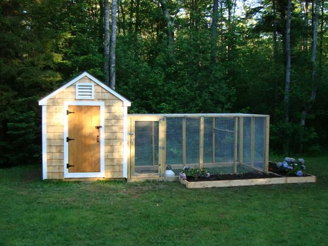 """The """"Hennebunkport."""" This simple design was created from hours of pouring over backyard chicken coop plans."""