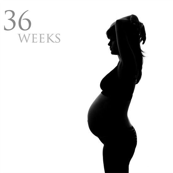 Dennis vd eijnden zwangerschap