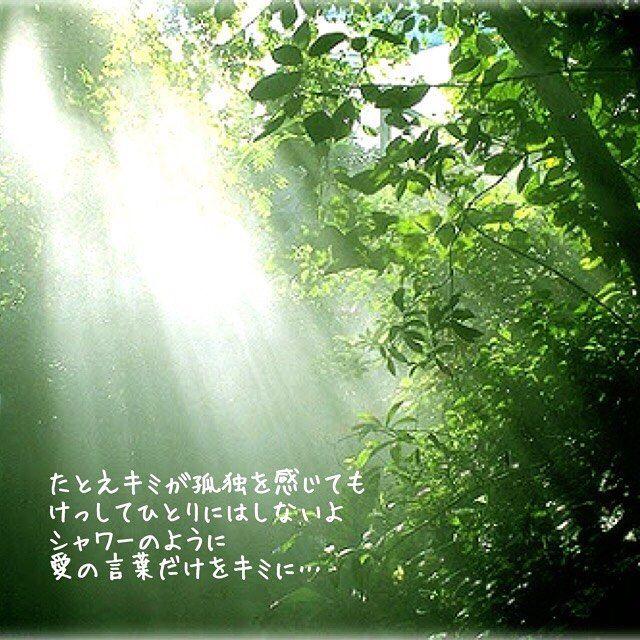 【mii_love_diary】さんのInstagramをピンしています。 《みぃ〜♡のキュン日記💕vol.20 #キュン日記 #キュン #日記 #恋 #恋愛画像 #ポエム #ポエム画像 #詩 #詩人 #ラブ #love #恋人 #ハート #緑 #森#愛の言葉》
