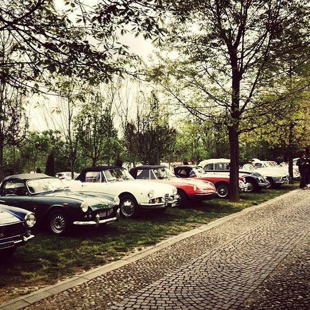 Incentive event to @lacolombera.ristorante 2014 memories ☺️#slowdrive #vintagecarrental #slowdriveeverywhere #vintagecar #classiccar #retrocar #car #cars #carlove #carrental #carstagram #instacar #instawheels #motor #autodepoca #vintage #oldcar #lovecar #selfdrivehire #selfdrive #alfaromeo #fiat #mg #triumph #vw #igcar #italy #italia #igdaily