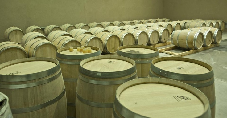 Casarena Winery ~ Mendoza Argentina