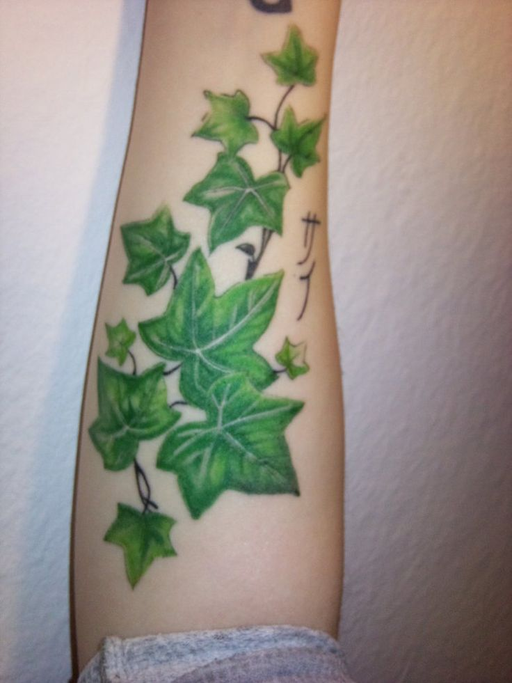 It looks ok tattoos pinterest demon tattoo for Poison ivy vine tattoos