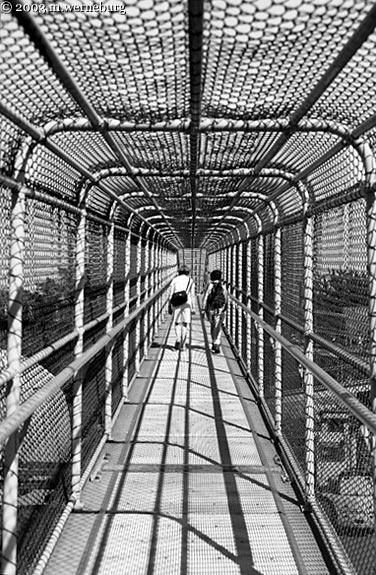 Pedestrian Overpass in Strathcona