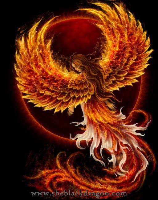 Birth of the Phoenix (back) - T-shirt design © Spiral Direct