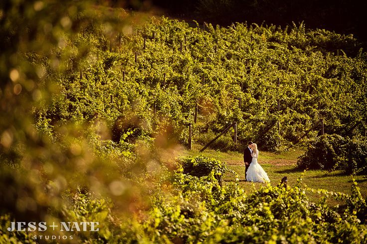 87 best ciccone vineyard amp winery weddings images on