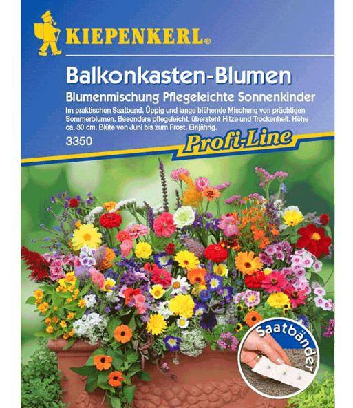 Ideal Balkonkasten uSaatband x jetzt kaufen bei BALDUR Garten In der Kategorie Saatband Blumen finden Sie Balkonkasten uSaatband x und weitere Angebote