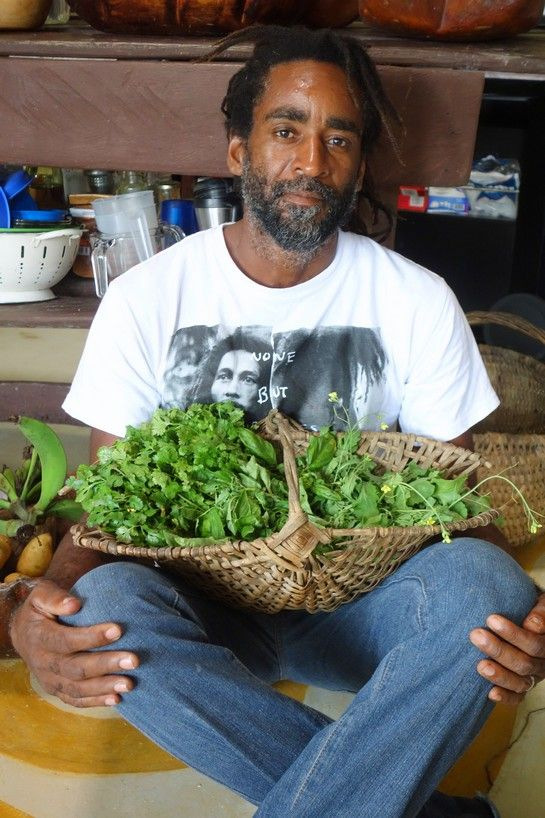 Stush in the Bush - A Jamaican couple offers organic tours with a crop-to-table repast | Have Passport Will Travel | Jewish Journal