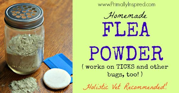 Ditch the toxic chemicals that are dangerous for both you & your pet. Instead, make this homemade flea powder that repels and kills fleas and ticks.