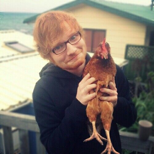 Community Post: 25 Times Ed Sheeran Melted Your Heart On Instagram