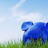 Decyzja ZUS/OFE oraz program do budżetu domowego.