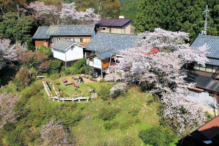 Mt.Yoshino