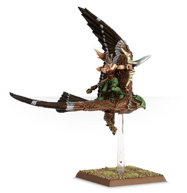 Warhawk Rider