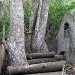 Canons of Ponta da Mina, Fortaleza da Ponta da Mina, Príncipe island. Author and Copyright James Leese