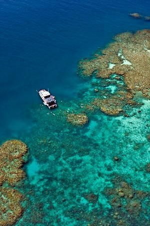 Why not plan a trip to visit the Great Barrier Reef in #Queensland #Australia