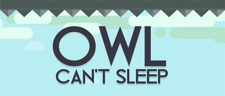 Owl Can't Sleep erapid games review