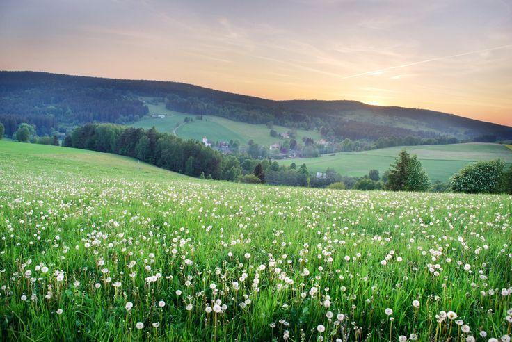 https://flic.kr/p/SpZoho | czech landscape ©Šárka Olehlová