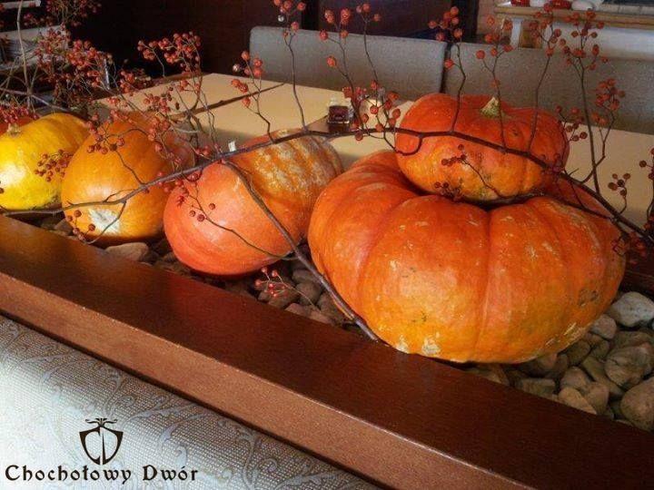 Sezon na dynię // Pumpkin season  #pumpkin #pumpkinrecipes