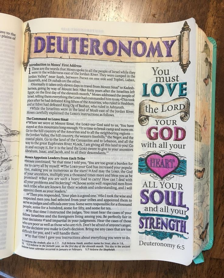 Inspire Bible NLT: The Bible for Creative Journaling: Tyndale, Christian Art: 9781496413741: Amazon.com: Books