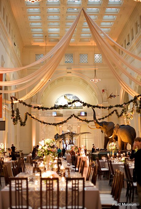 Brides.com: . The Field Museum in Chicago, Illinois. It's a science geek's paradise: Offbeat couples can get married in the museum's main hall, Stanley Field, under the watchful eyes of Sue the dinosaur and two stuffed elephants; The Field Museum.