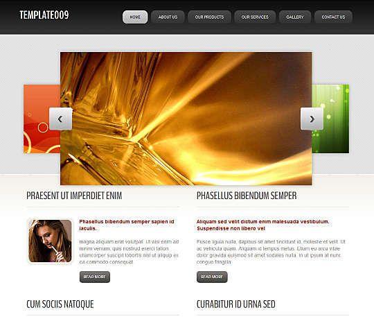 template009 HTML Template  #Art #Business #Internet #Personal Link: https://goo.gl/Mpaeu1